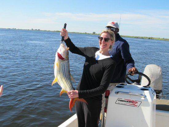 Shackletons: 6.2kg Tiger fish - First time fisher woman.