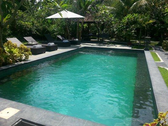 Puri Asri Villa & Spa : pool