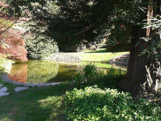 i Giardini di Villa Melzi: Interno dei giardini