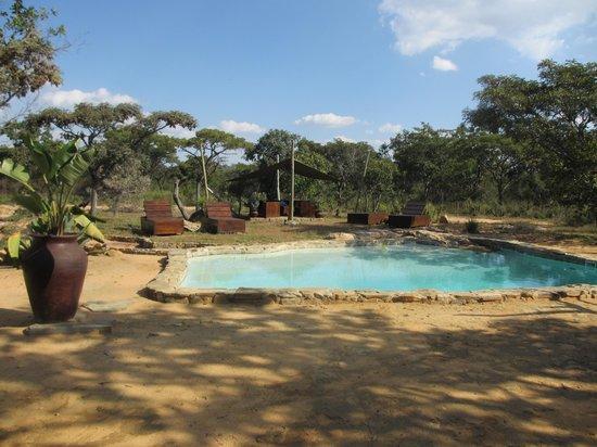 Ama Amanzi Bush Lodge: zwembad vlakbij huisje
