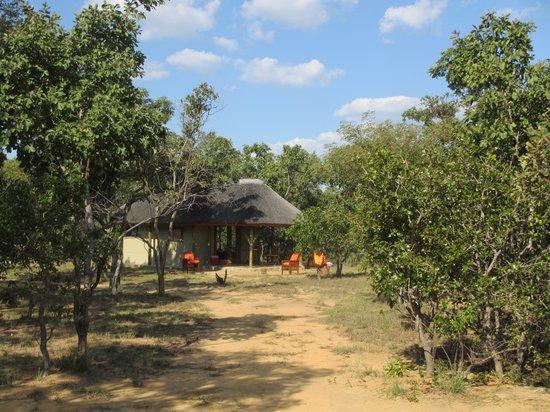 Ama Amanzi Bush Lodge: gasten huisje