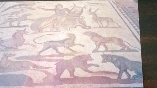 Kato Paphos Archaeological Park: Raffigurazioni d secoli!
