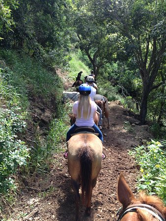 Mendes Ranch : Mountain Trail
