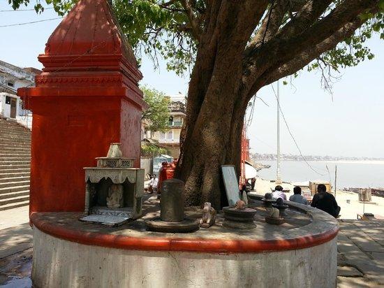Assi Ghat : The ghat