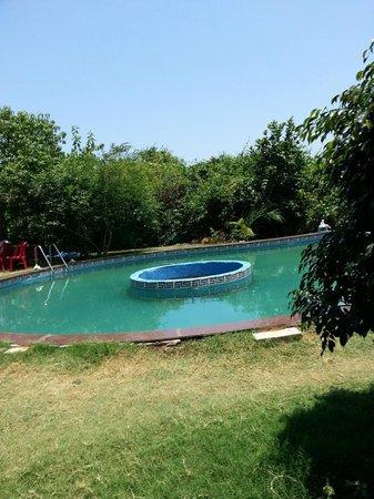 SVInns Dwarkadhish Resort : Swimming pool is very small, not clean.