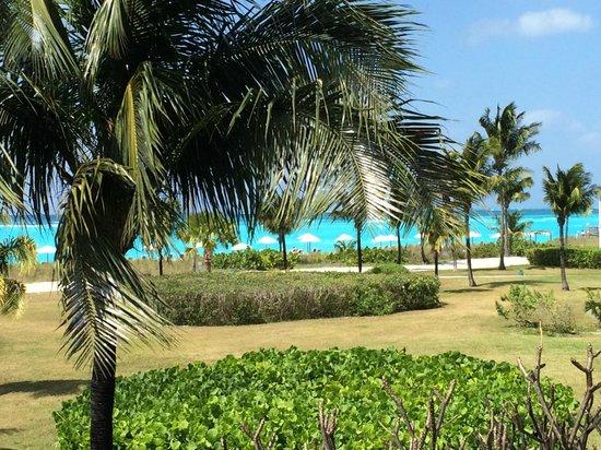 Club Med Columbus Isle: Vue