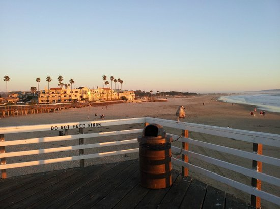 Sandcastle Inn: View from the pier