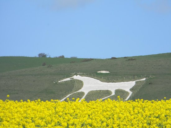 Mad Max Tours: White horse hill