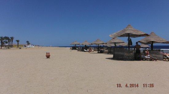 Siva Port Ghalib : plaża hotelowa