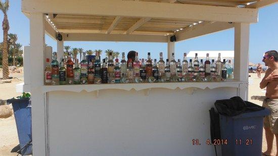 Siva Port Ghalib : bar na plaży