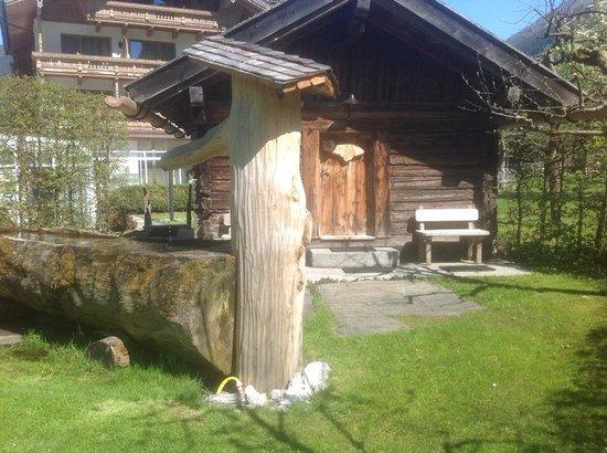 Gutshof Zillertal: Outdoor Sauna and Dunk Trough!