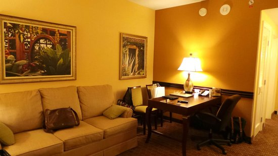 Embassy Suites by Hilton Orlando Lake Buena Vista South: Room 915