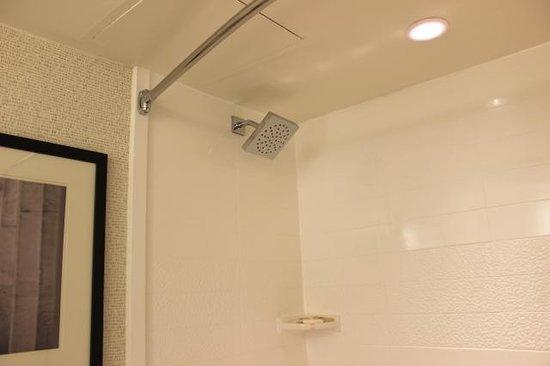 Holiday Inn Washington - Capitol: very nice shower