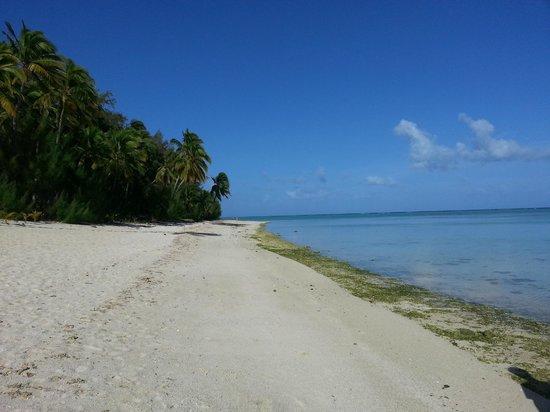 Tamanu Beach : La spiaggia