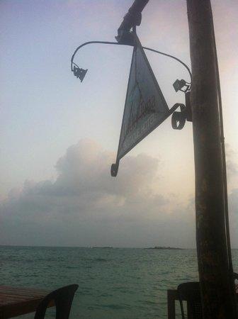 Lucky Tuna : View