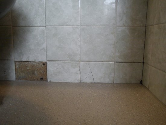 Chatsworth House Hotel: Cracked and missing tiles, room 258, April 2014