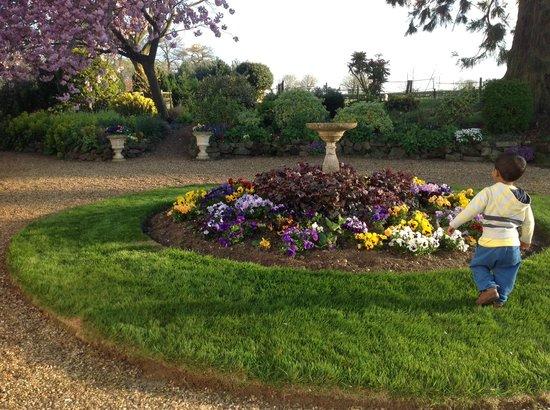 Lawford Hill Farm: Front garden