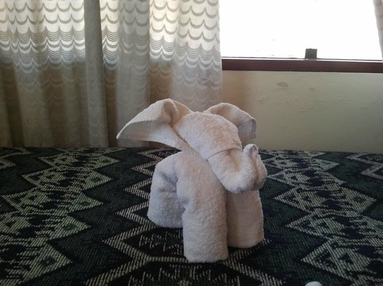 B&B Llaqtayay: Little elephant welcoming at the room