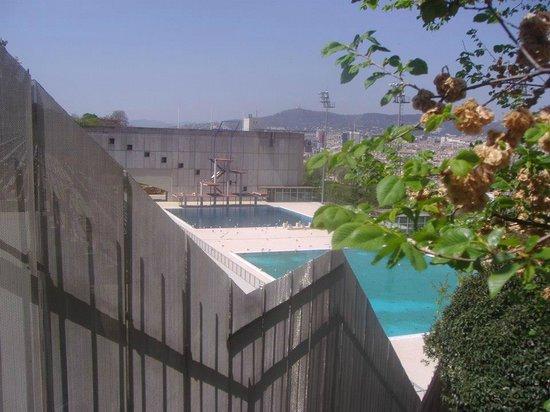 Estadi Olímpic: Diving pool