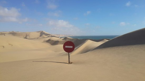 Photo Ventures Namibia - Day Tours: Tacke care one way ahead  best pics in the  world contact photoventures in walvisbay