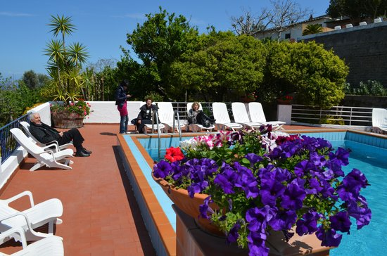 Hotel Pensione Monti: al sole in piscina