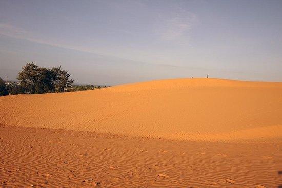 Red Sand Dunes: 레드샌듄 - 실물보다 10배는 붉게 나온 듯..