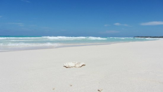 Beach - Royalton Punta Cana Resort & Casino: ☼