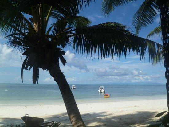 Villas de Mer: Plage de l'Hotel (Grand Anse)