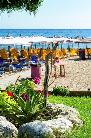 Loukas Hotel: Hotel LOUKAS/Sunbeds and Umbrellas