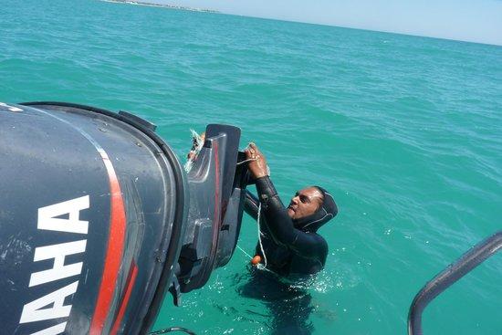 "Winzrik Resort & Thalasso Djerba : notre ""capitaine"""