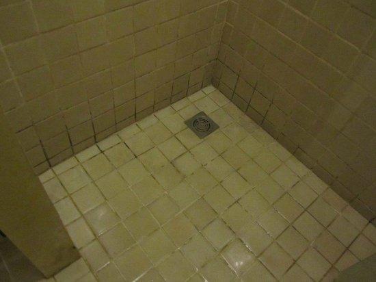 New Star Beach Resort : disgusting shower