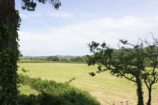 Wheal Rodney Holiday Park: View from camping