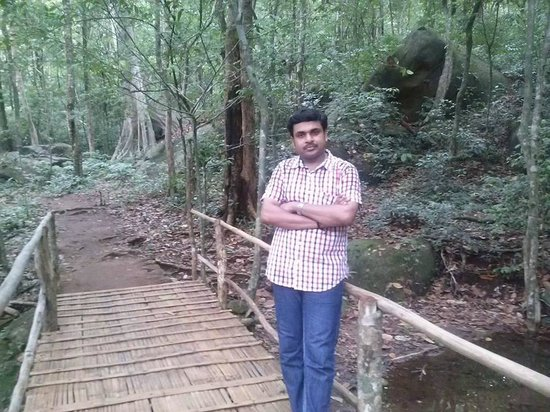 Thommankuthu Falls : On a forest bridge