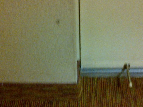 Monte Carlo Inn Mississauga / Toronto West: By the room door
