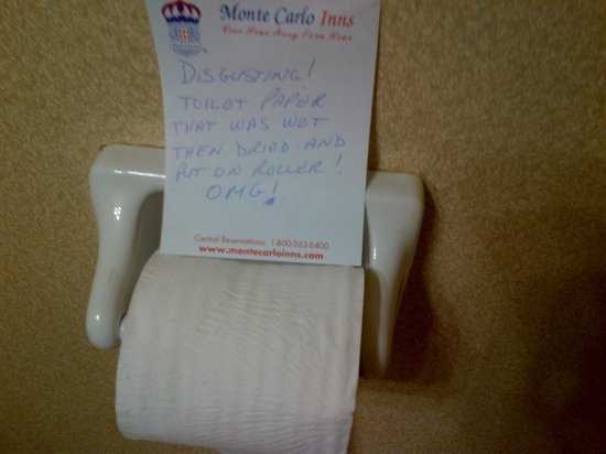 Monte Carlo Inn Mississauga / Toronto West: This pic is of a wet toilet paper roll that was dried and and then returned to the roller