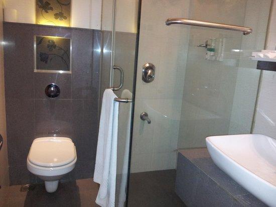 Separate bathroom luxury room picture of hotel for Bathroom designs mumbai