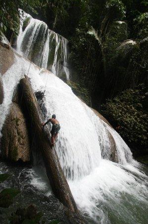 Tentena, Ινδονησία: Saluopa