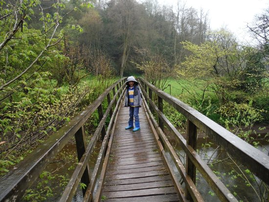 YHA Ilam Hall: Grounds - crossing the river