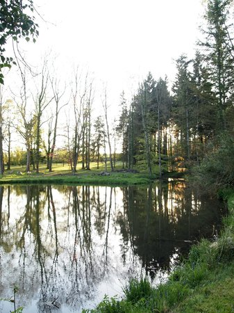 Chateau de Pancy: The duckpond in the grounds