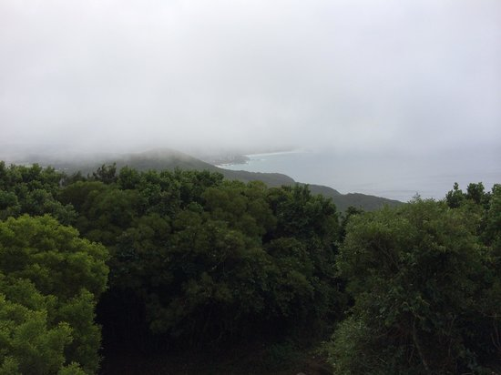 Cape Hawke Lookout: It's overcast and raining but still great views