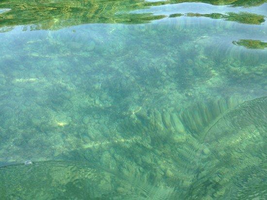 Lac Léman (Lac de Genève) : Женева озеро - вода прозрачна