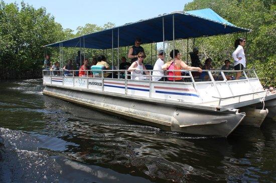 Jamaica Xplored: A day on the Black River Safari