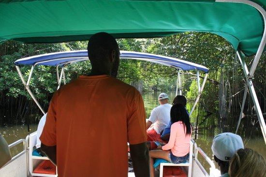 Jamaica Xplored: Black River Safari......