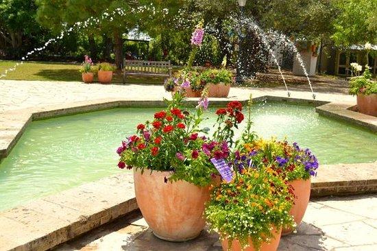 San Antonio Botanical Garden: Fountains