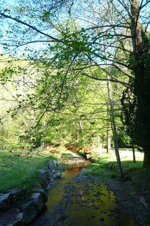 Domaine De La Brugere: The brook by the Japanese bridge