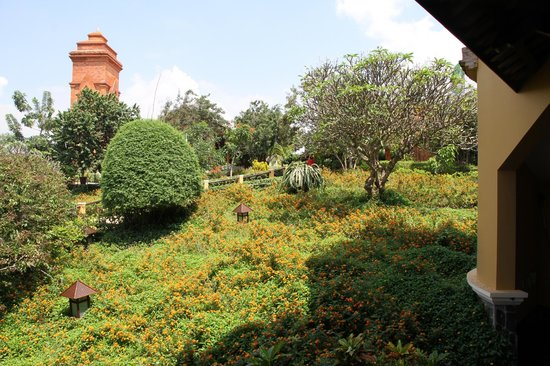 Poshanu Resort : Hotel grounds