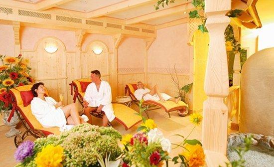 Wellness & Aparthotel Taxerhof: großzügiger Saunabereich