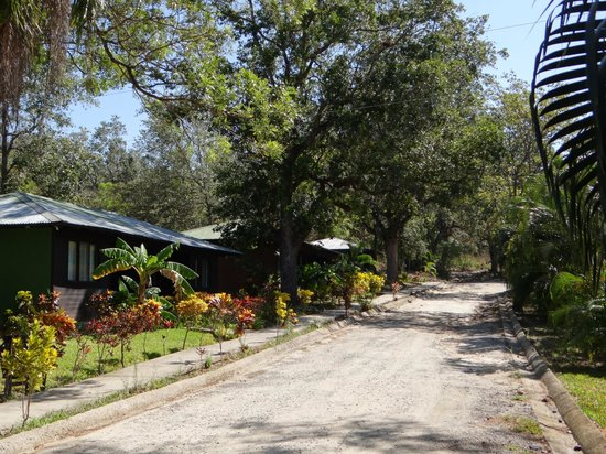 Canon de la Vieja Lodge : Hotel