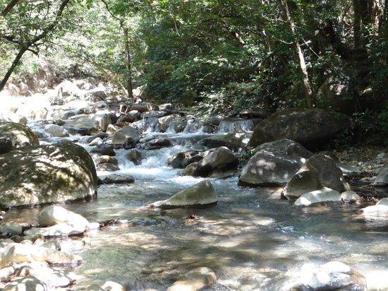 Rincon de La Vieja National Park: Río sector Las Pailas