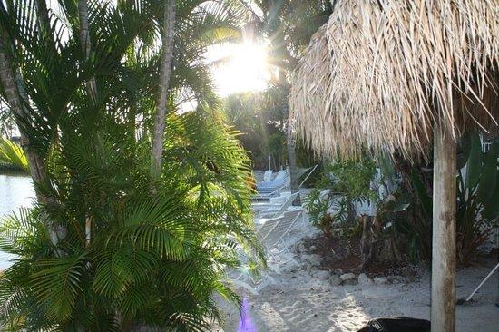 Marco Island Lakeside Inn: Strandbereich